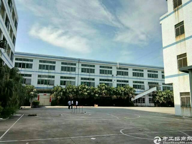 东城牛山独院单一层2000平方带办公室装修