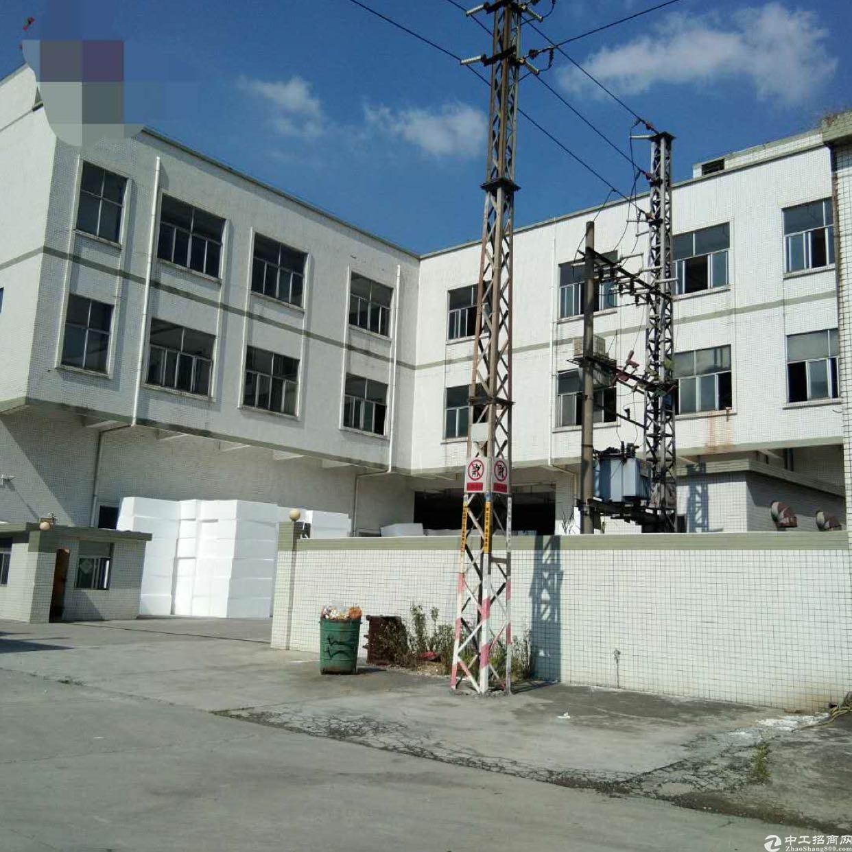 龙溪镇独门独院厂房招租