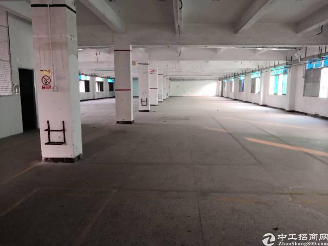 平湖山厦村大工业区新出三楼整租层3000平