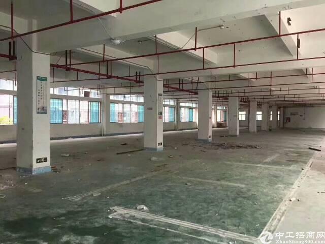 龙岗中心城附近独院15000平方厂房出租,大小分租-图4