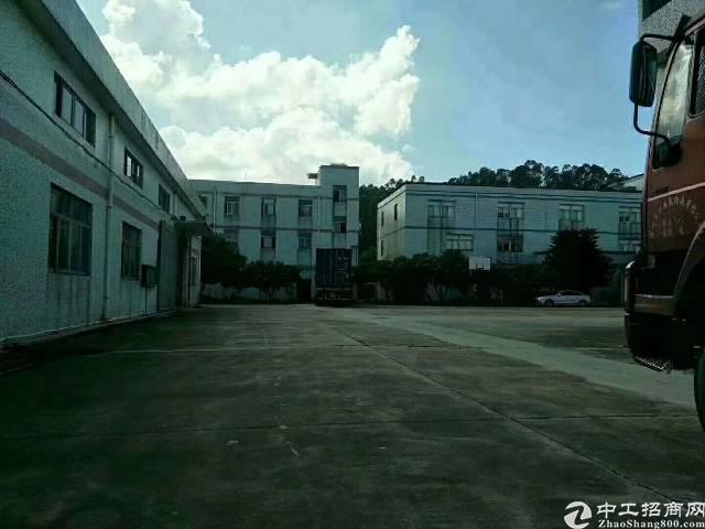 松岗燕川高速出口新出独门独院钢构20000平米出租,空地超大