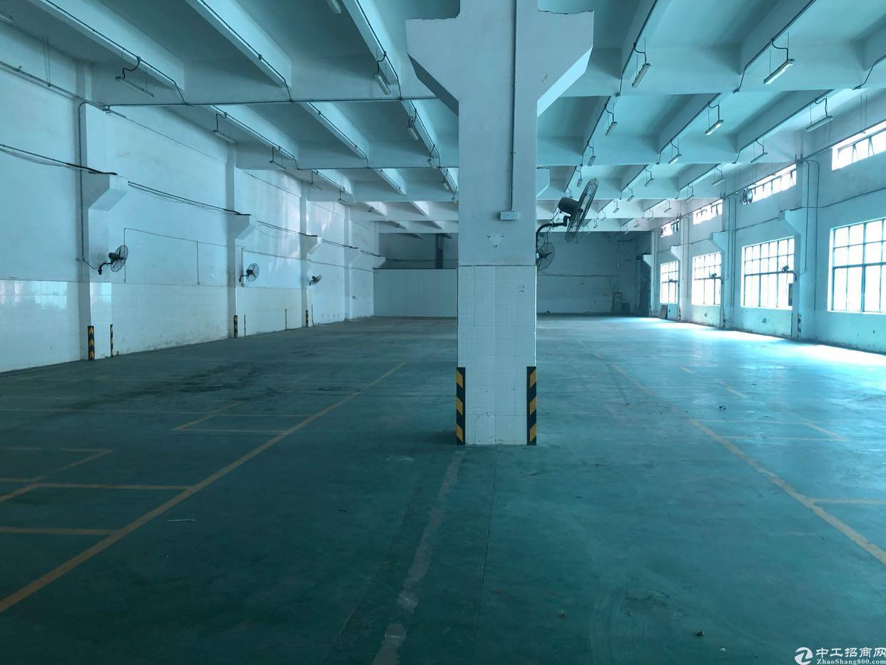 平湖新出一楼层高6米1800平厂房急租可分租