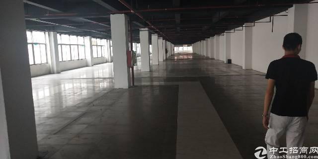 坂田雪象医院附近新出带装修30000平厂房出租!可分租