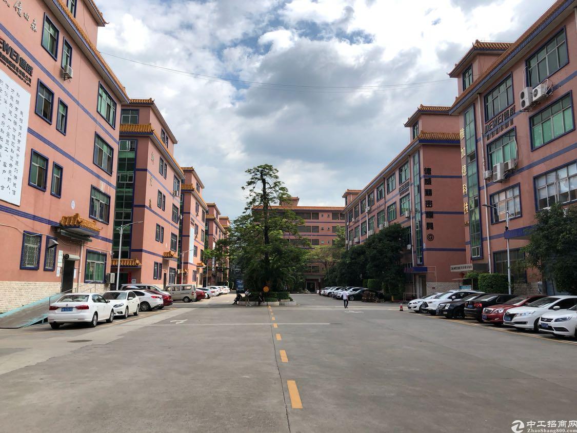 福永凤凰新出楼上850平方带精装修厂房出租