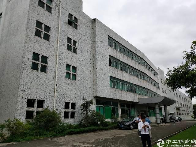 福永和平原房东实际面积标准厂房出租3800平方大小可分