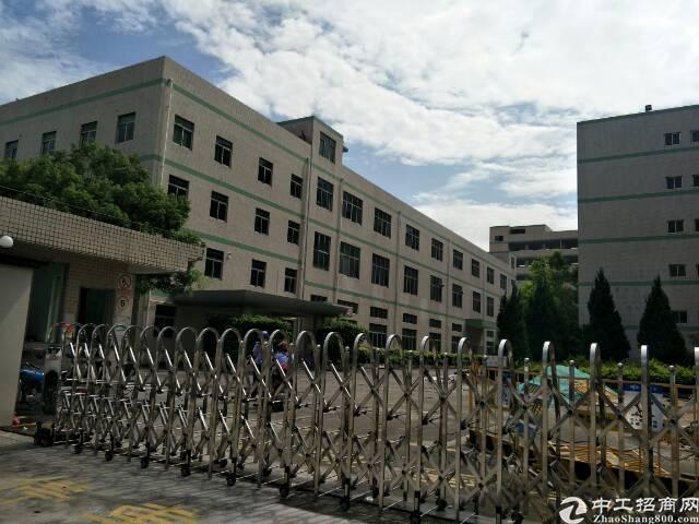 原房东红本厂房出租18000平米 厂房俩栋12500,办公楼