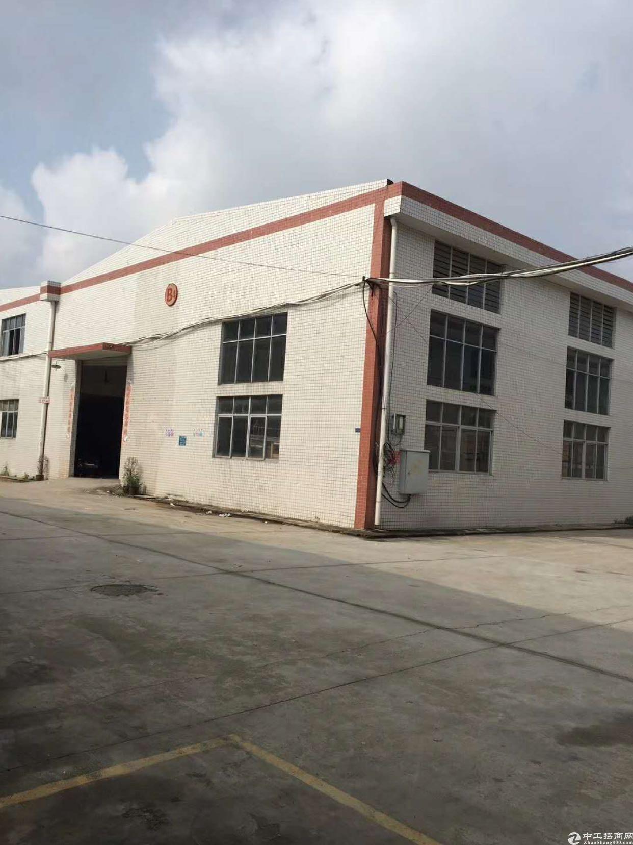 陈江镇主干道钢构厂房出租2000平方米原房东