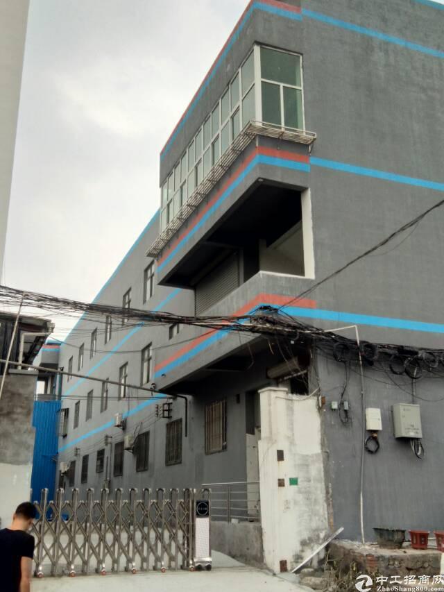 上沙新出精装修厂房三楼1200平方低价出租