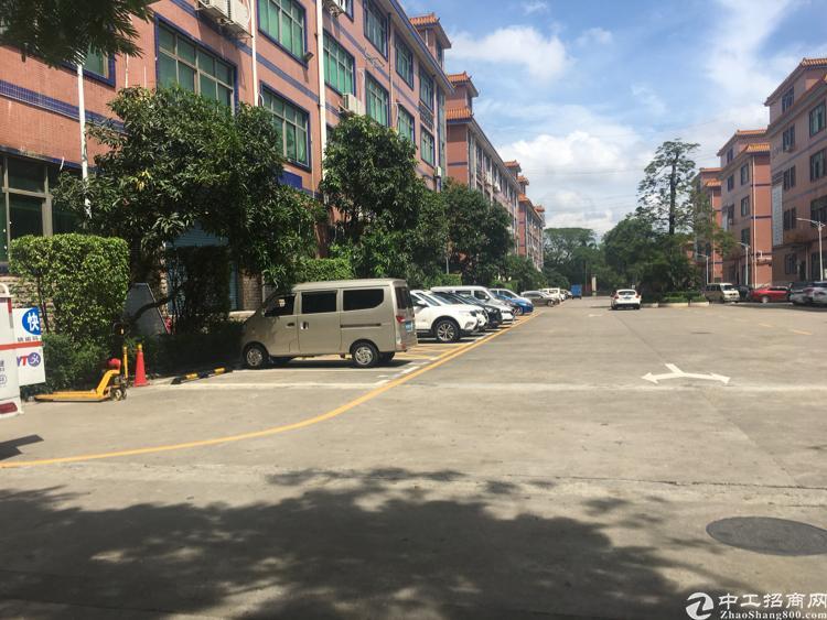 福永凤凰高档大型园区豪华装修办公室700平招租   转租