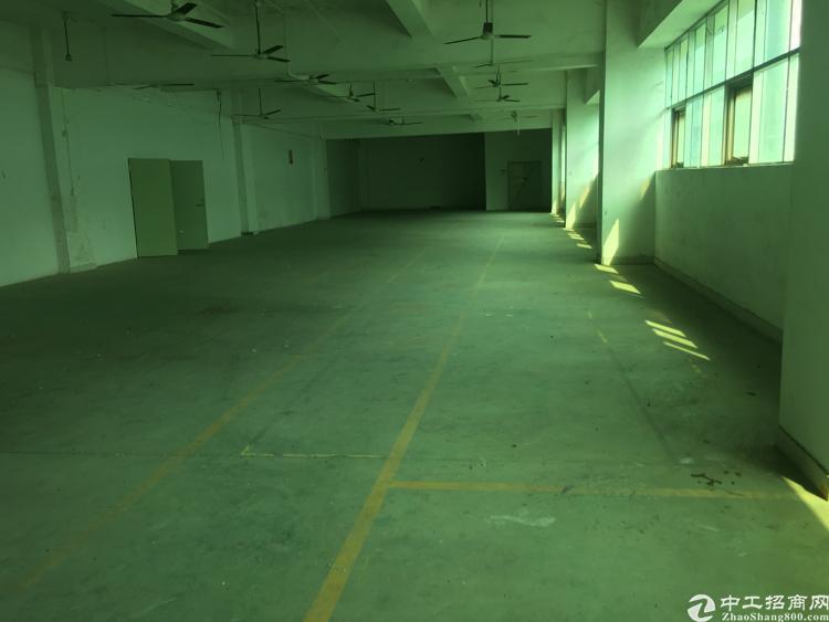 沙井沙一新出厂房