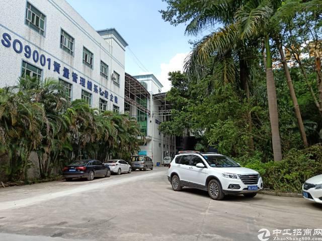 公明李松朗1楼1450平方5米高带装修厂房出租