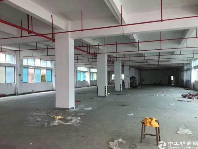 龙岗中心城附近独院15000平方厂房出租,大小分租-图5