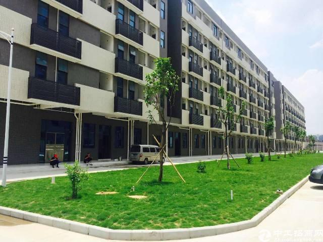 大朗原房东分租标准厂房1~4楼可按层租