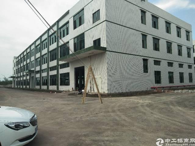 标准厂房6000平米出售