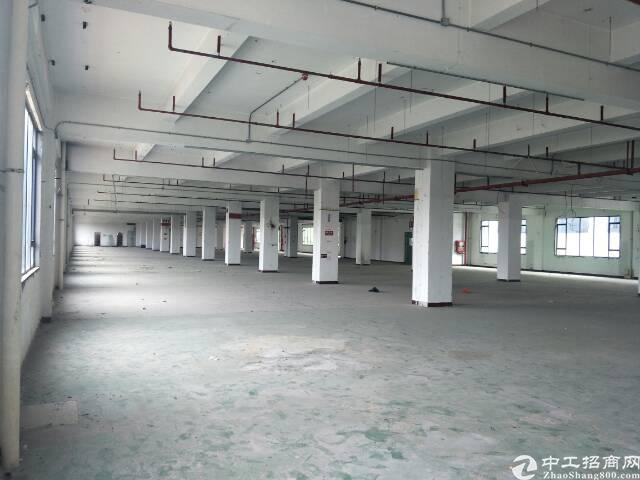 石岩2000平超靓厂房出租