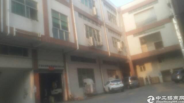 松岗沙浦围工业大道有一楼6米高精装修厂房800平出租