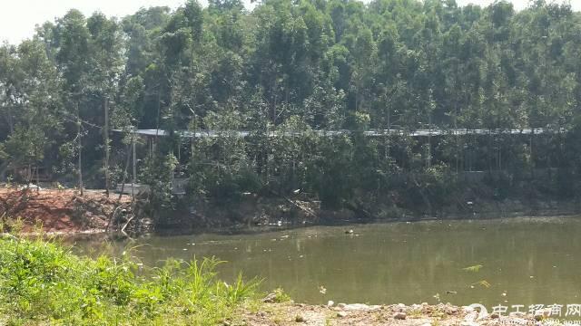 企石镇原房东深山独院铁皮房1400平方滴水7米
