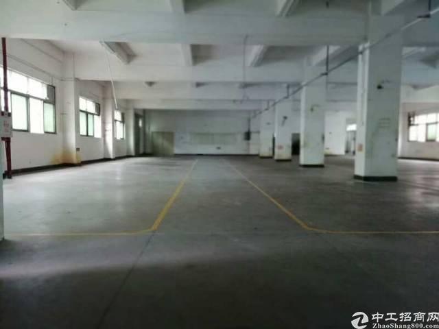 平湖新出1500平米厂房招租,交通非常便利,上下货方便!