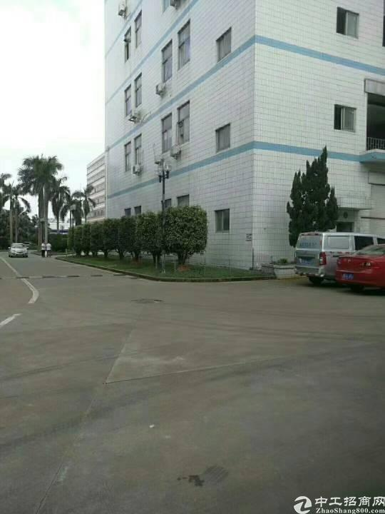横岗 荷坳原房东一楼标准厂房5米5实际面积1600平方出租!