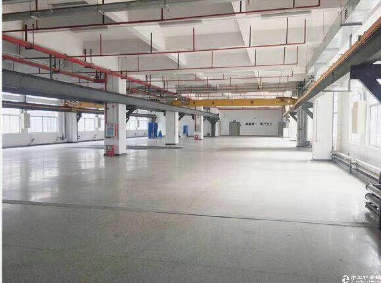 新出原房东标准厂房楼上1900平方米