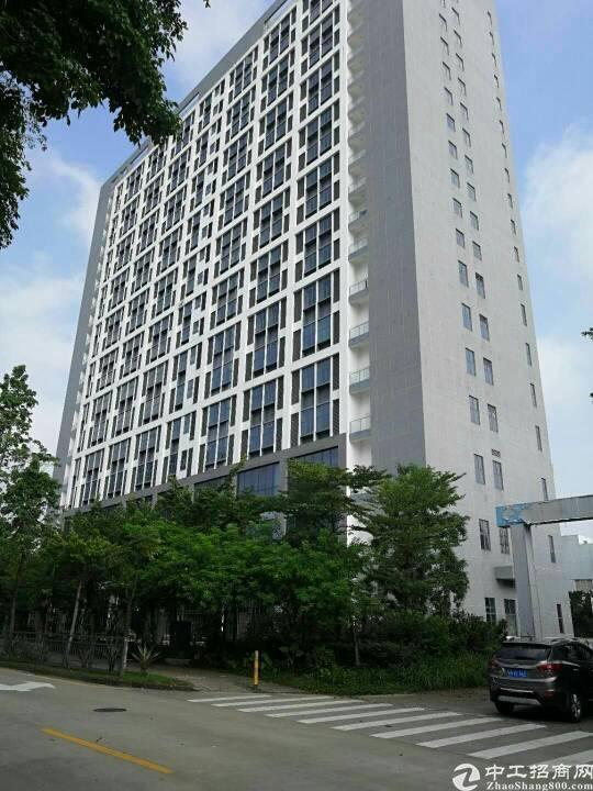 龙岗宝龙 地铁站 全新整栋商业综合楼3万平合同15年免租半年
