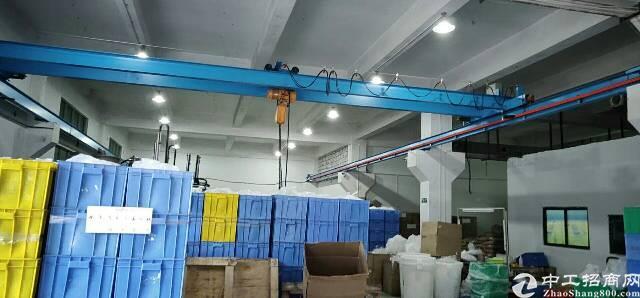 松岗高速辅道边,新出一楼厂房招租,厂房面积600平米