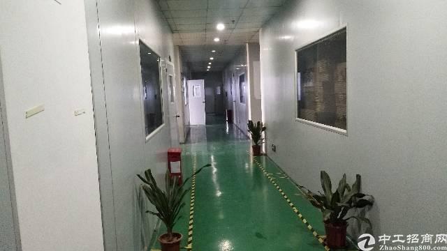 沙井共和大型工业园新出装修厂房出租楼上963平,精装修