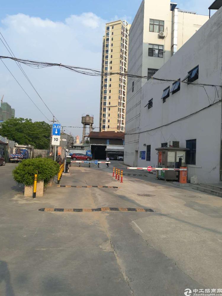 沙井南环路新出厂房一楼仓库600平高度9米