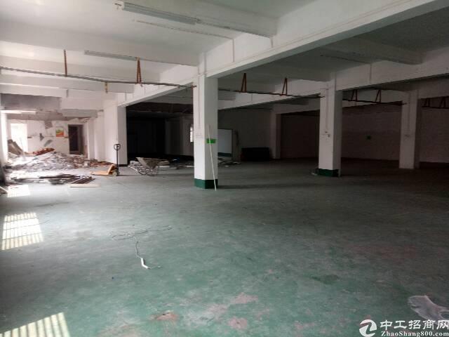 清溪镇厂房出租,一楼高5.5米带消防喷淋