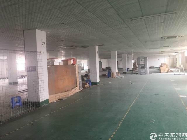 沙井新桥楼上精装修厂房3000平方出租