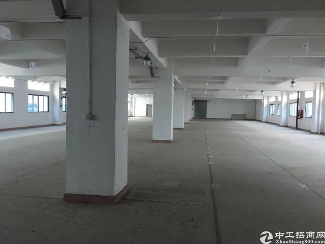 茶山镇独门独院厂房分租三楼