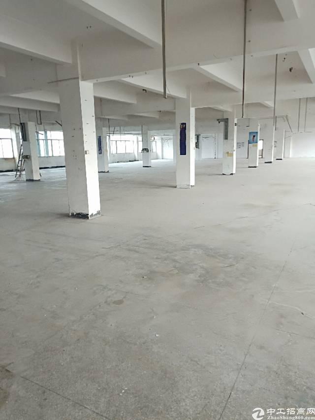 平湖富民楼上1800平方厂房出租 已搬空