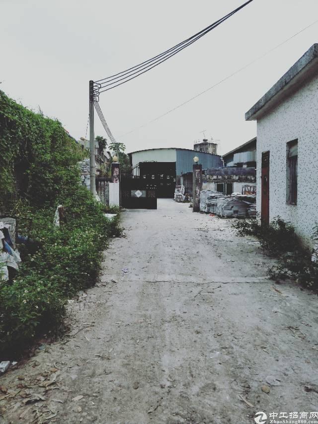 企石镇原房东独院单一层铁皮厂房4000平方滴水8米
