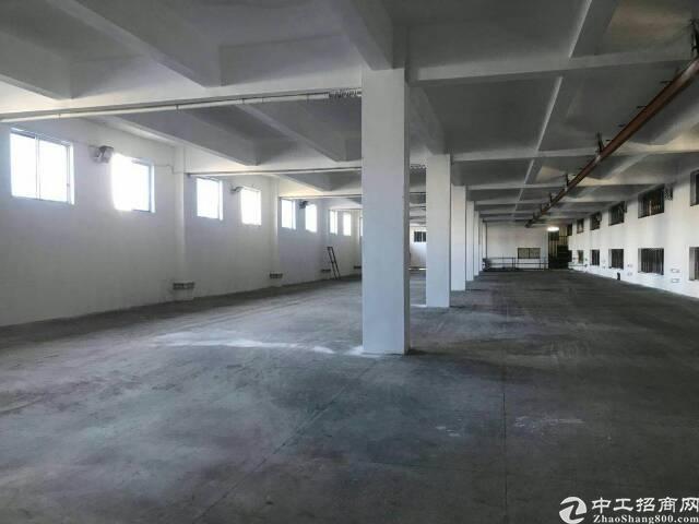 企石铁炉坑一楼1200平方出租