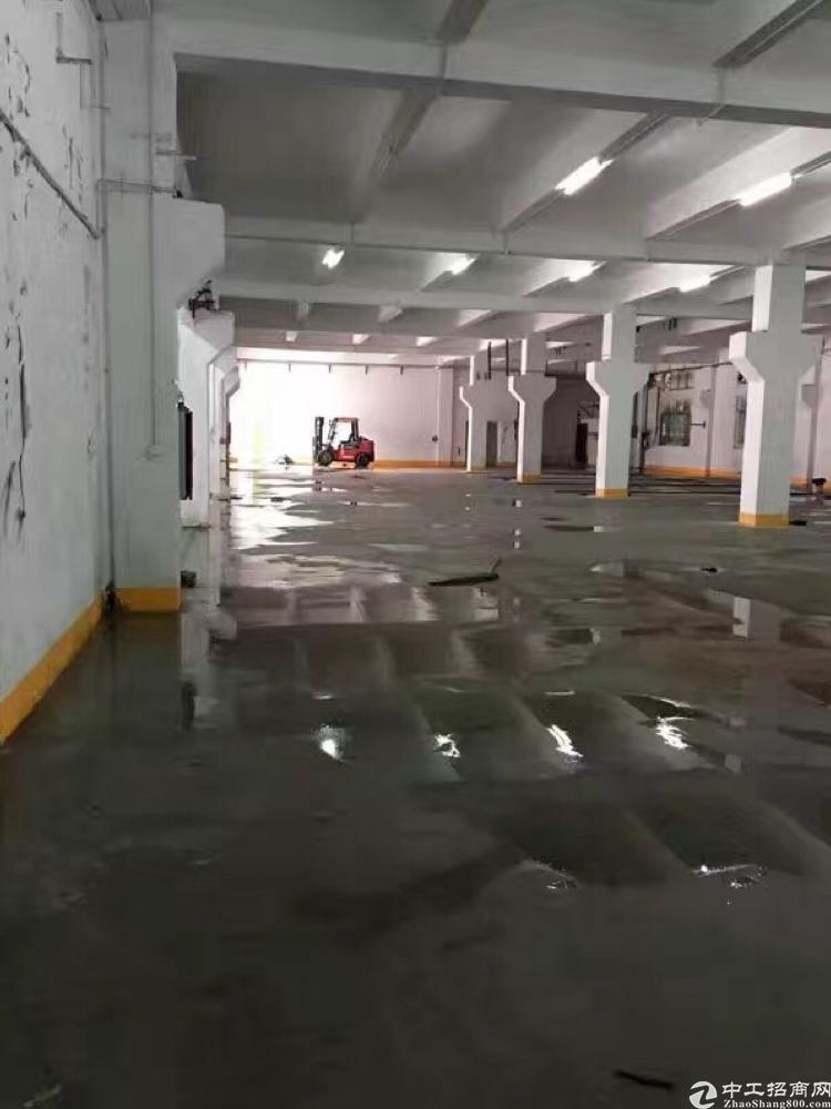 松岗潭头西部工业区一楼七米带牛角标准厂房1800平米无公摊出