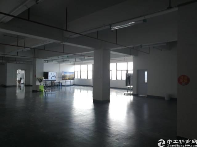 光明南光高速出口1公里新出楼上原房东精装修厂房750平
