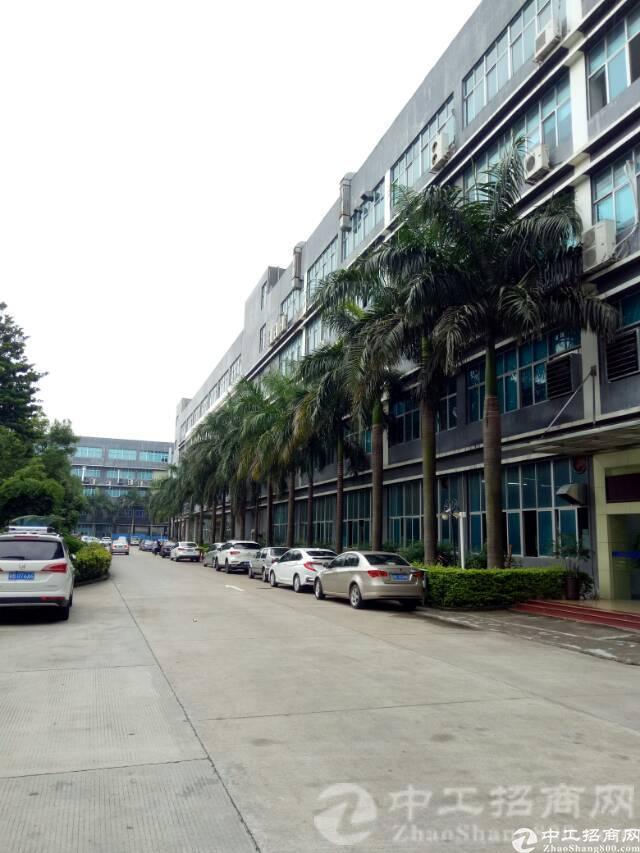 厚街寮夏工业区厂房楼上3000平方全新装修,有红本,有消防证