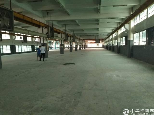 松岗大田洋新出一楼3500平米带现成行车厂房
