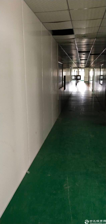 西乡鹤洲新出1300平无尘车间厂房