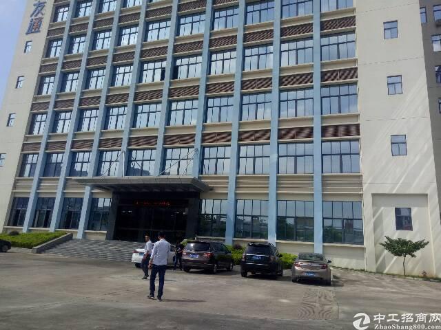 光明管委会100米红本写字楼7层9100平可分单层1300