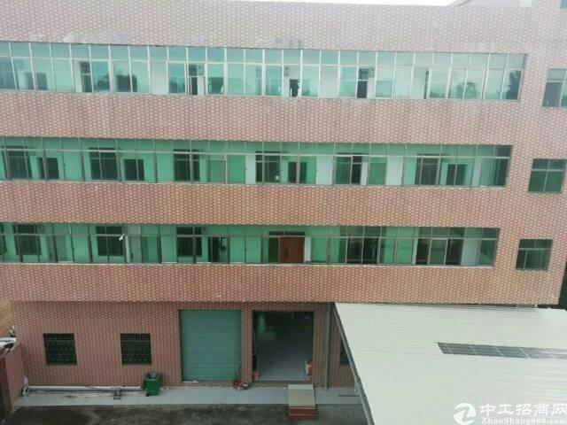 惠州市惠城区小金口独院厂房招租 红本标准厂房,建筑面积总共: