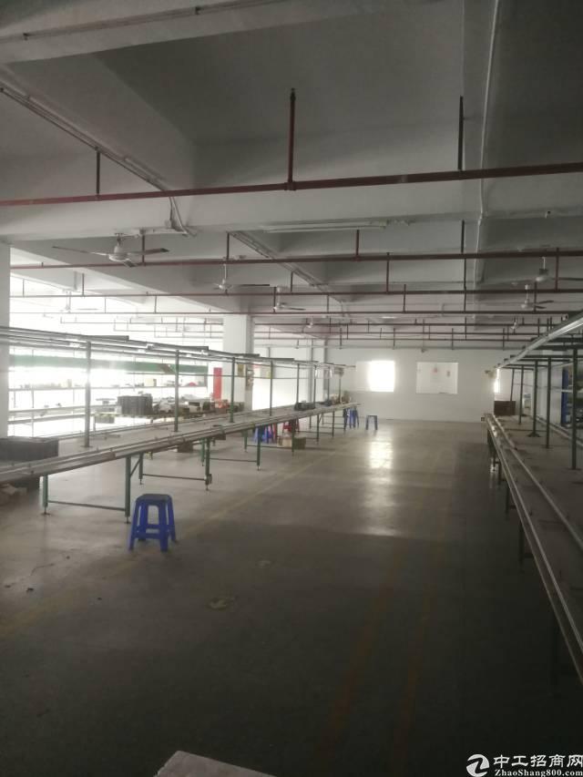 横岗安良三楼整层1500平米标准厂房招租-图2