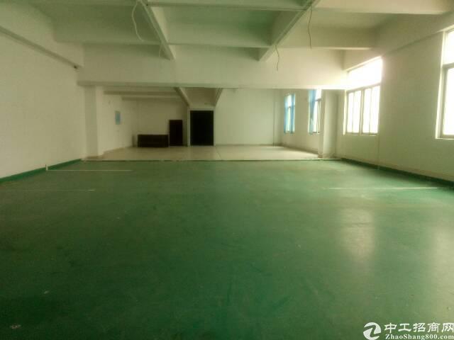 华南城附近新出原房东带装修2楼标准厂房1250平