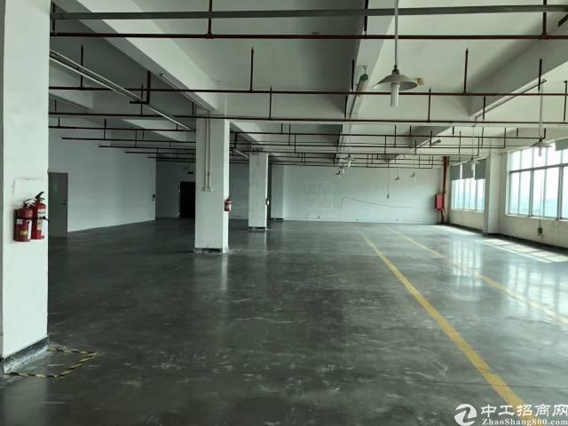 福永107国道边带装修厂房1600平出租