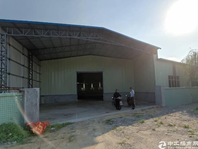 园洲新出钢构4000平方带超大空地厂房