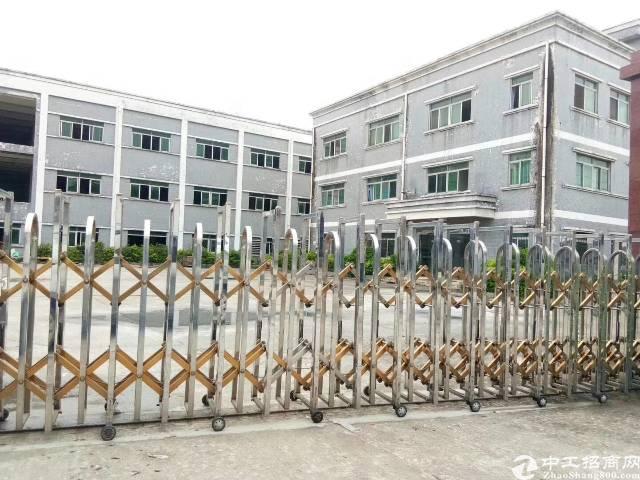 茶山新出独门独院标准厂房6200平方形象漂亮价格便宜
