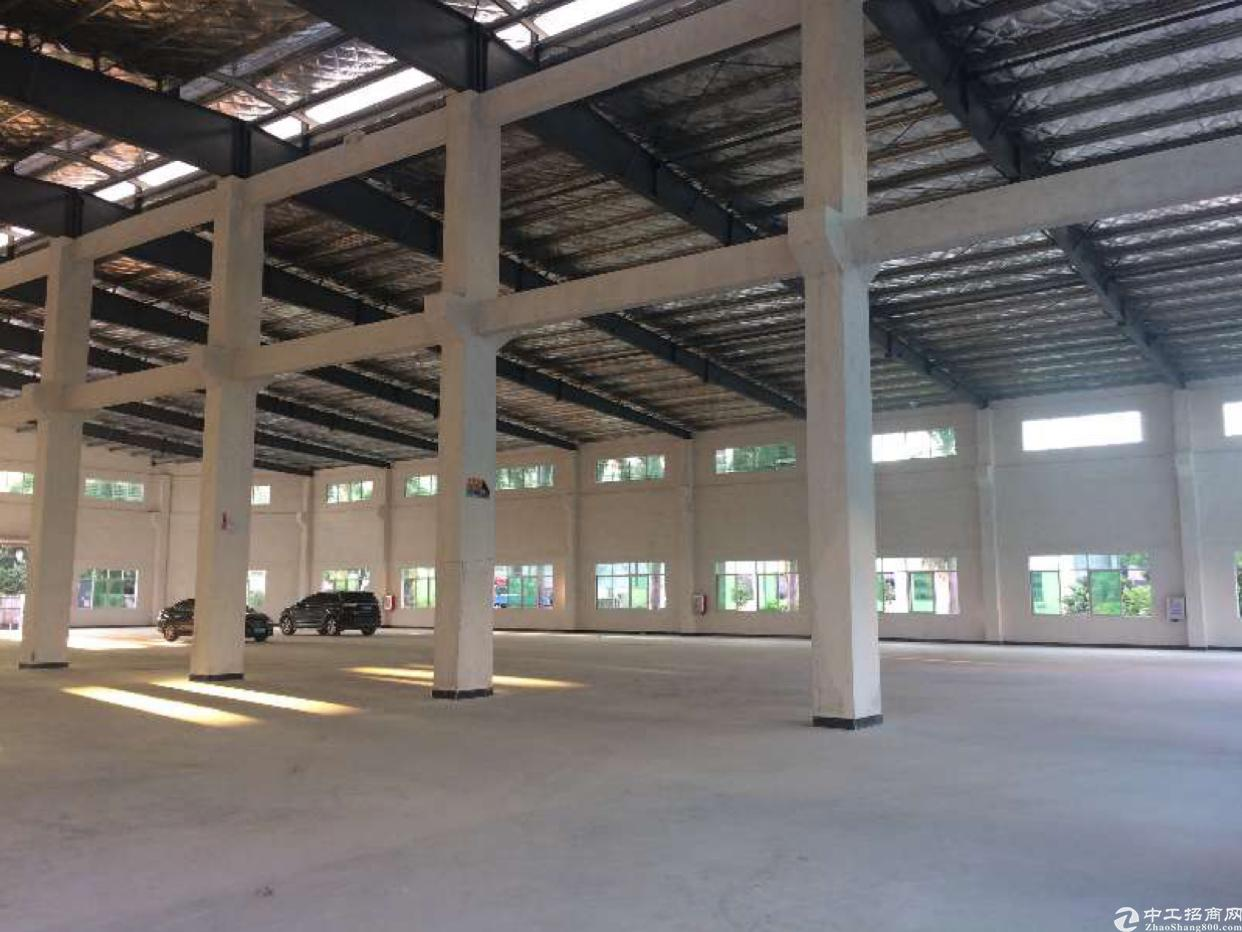 东莞市大朗镇新出单一层红本厂房滴水8米