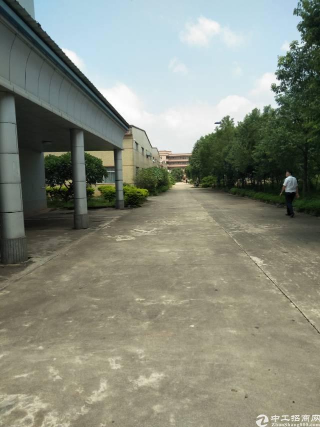 龙溪单层厂房三万平米出售