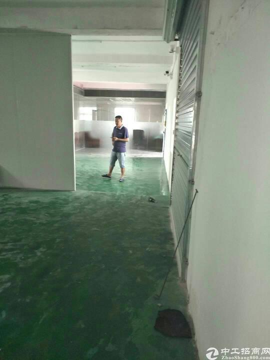 惠州  大亚湾西区新出原房东带红本600平方招租
