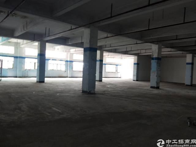 沙井后亭地铁站旁边4500平方大小分租